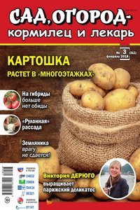 Сад огород кормилец и лекарь №3 2018