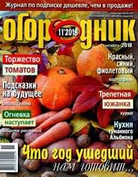 Огородник № 11, 2018 | Украина