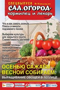 Сад огород кормилец и лекарь спецвыпуск №10 2019