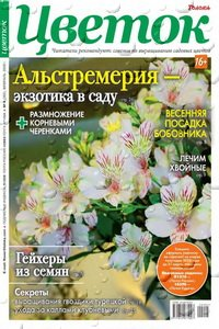 Цветок №4 2020
