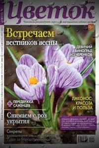 Цветок №5 2020