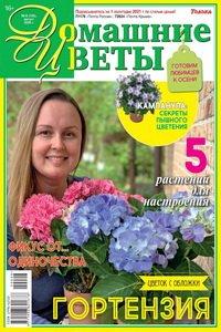 Домашние цветы №8 2020