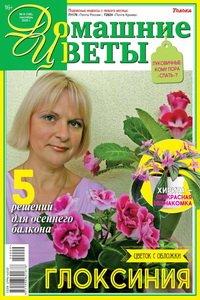 Домашние цветы №9 2020
