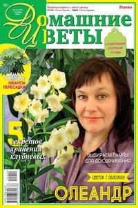 Домашние цветы №10 2020