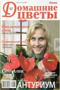 Домашние цветы №8 2012