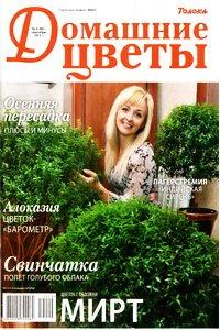 Домашние цветы №9 2012