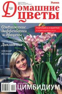 Домашние цветы №10 2012
