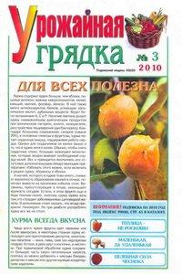 Урожайная грядка №3 2010